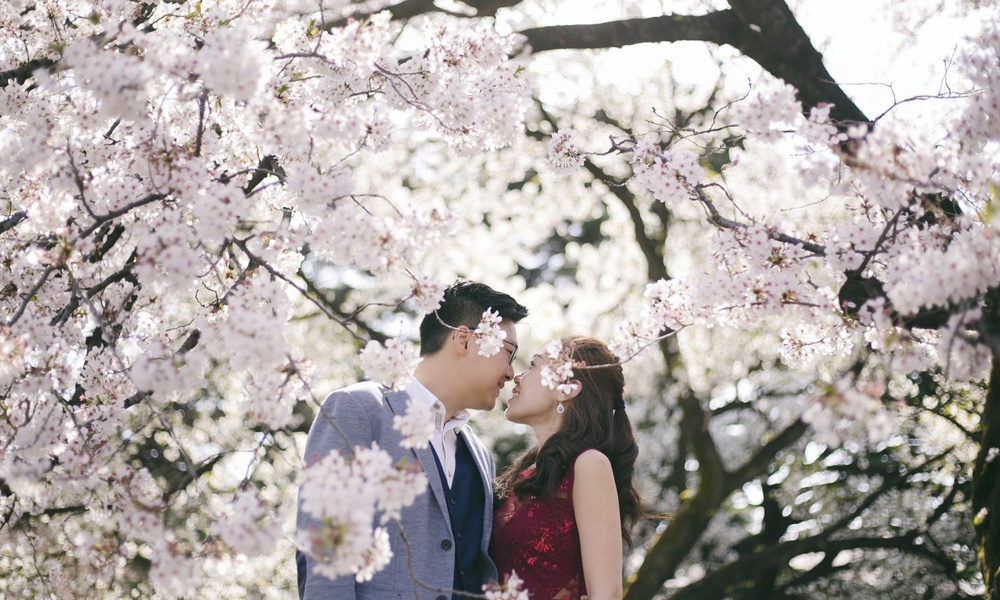 Japan pre-wedding and engagement photo